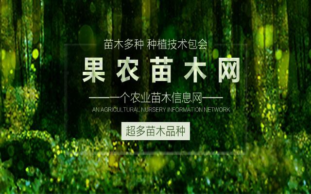 果农网宣传
