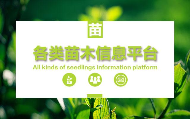 果农网手机版宣传